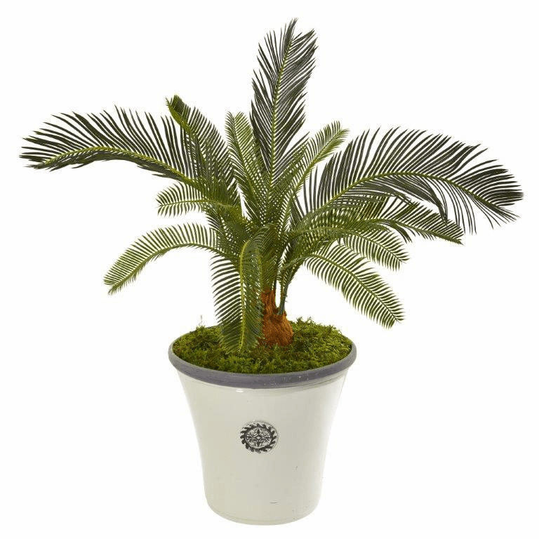 33� Cycas Artificial Plant in White Planter