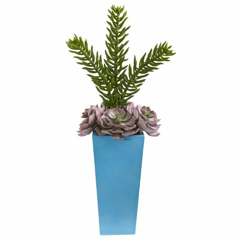 33� Echeveria and Spiky Succulent Artificial Plant in Blue Planter