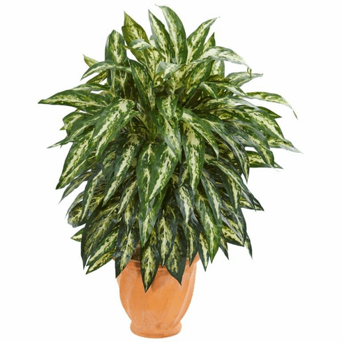 "34"" Aglonema Artificial Plant in Terra Cotta Planter"