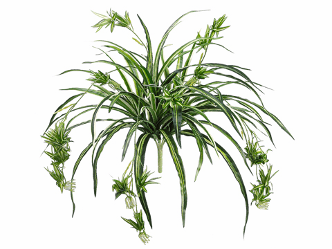 "34"" Artificial Spider Plant Bush Plant - Set of 12"