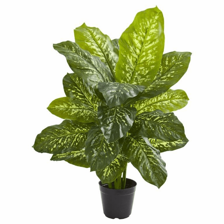 34� Dieffenbachia Artificial Plant (Real Touch)