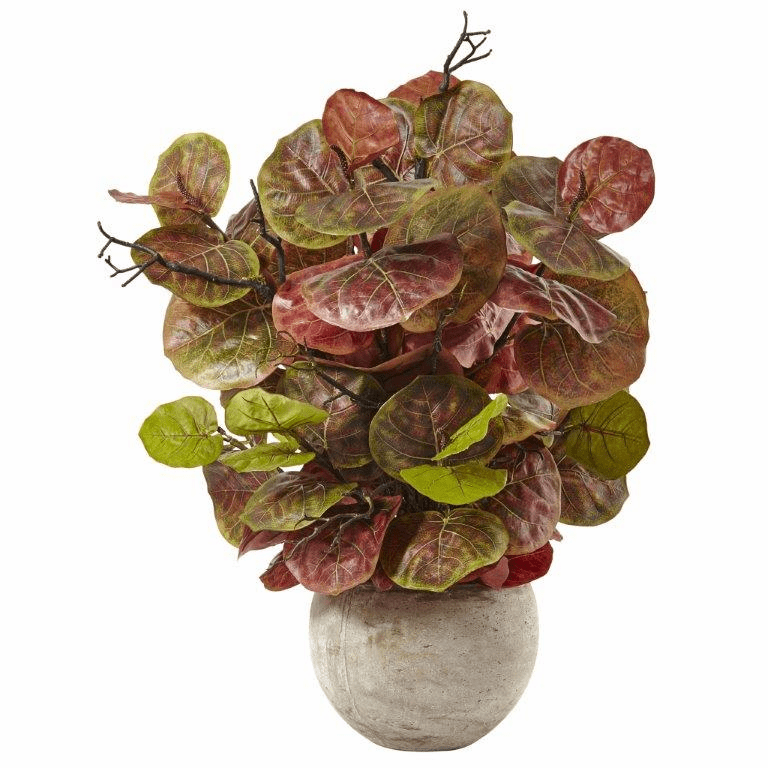 "36"" Artificial Seagrape Plant in Sand Colored Bowl"