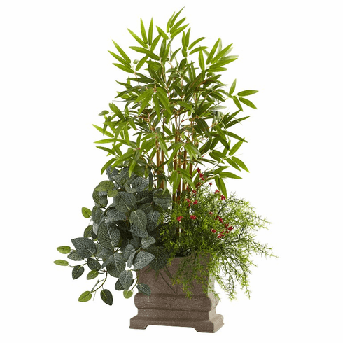 "38"" Mixed Mini Bamboo, Fittonia & Springeri w/Planter"