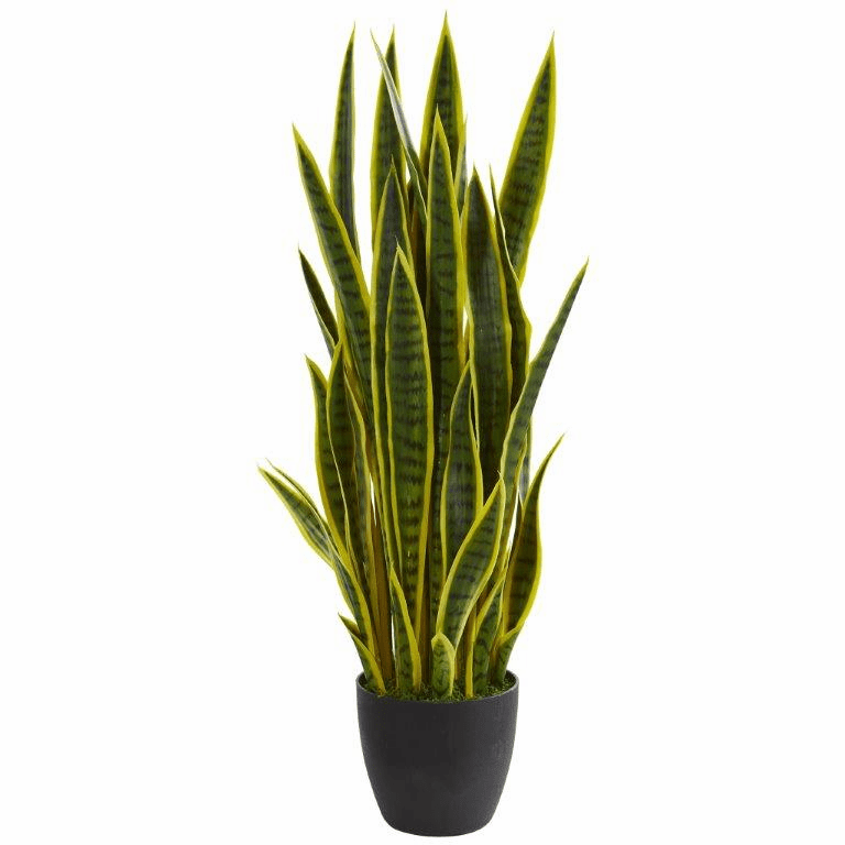38� Sansevieria Artificial Plant - Yellow