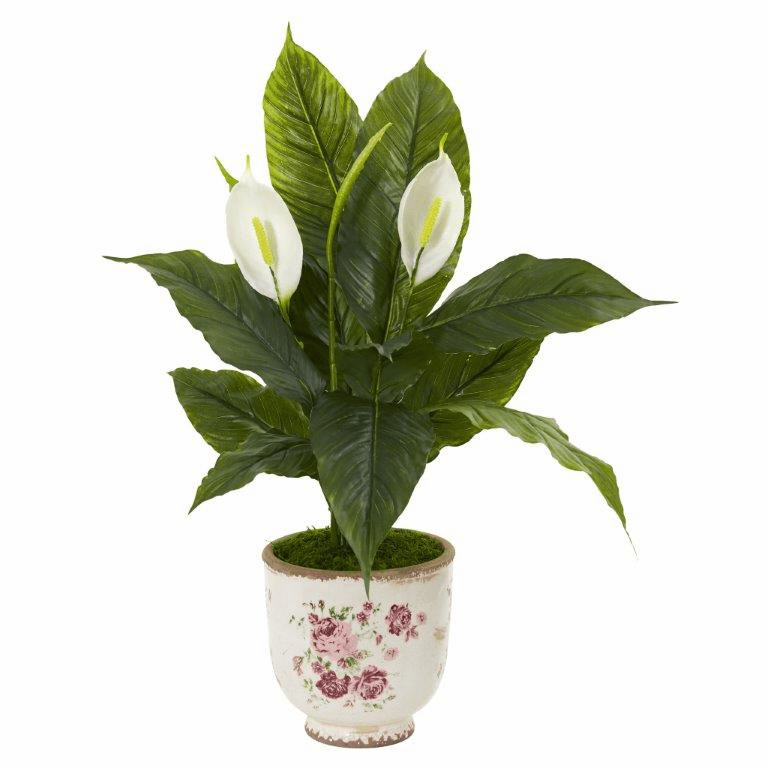 38� Spathifyllum Artificial Plant in Decorative Vase