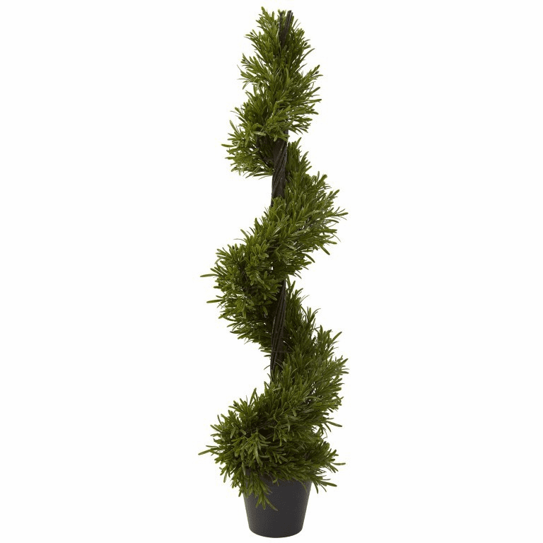 39� Rosemary Spiral Tree (In-door/Out-door)