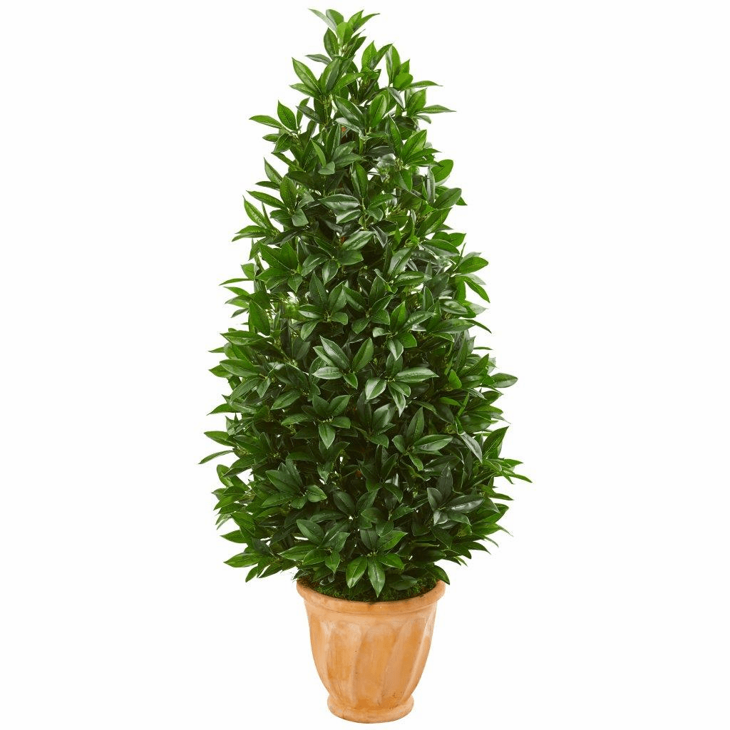 4.5� Bay Leaf Cone Topiary Artificial Tree in Terra Cotta Planter UV Resistant (Indoor/Outdoor)