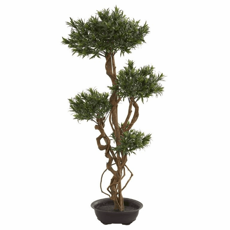 4.5� Bonsai Styled Podocarpus Artificial Tree