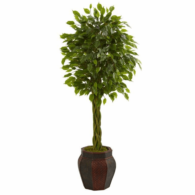 4.5� Braided Ficus Artificial Tree in Decorative Planter  -