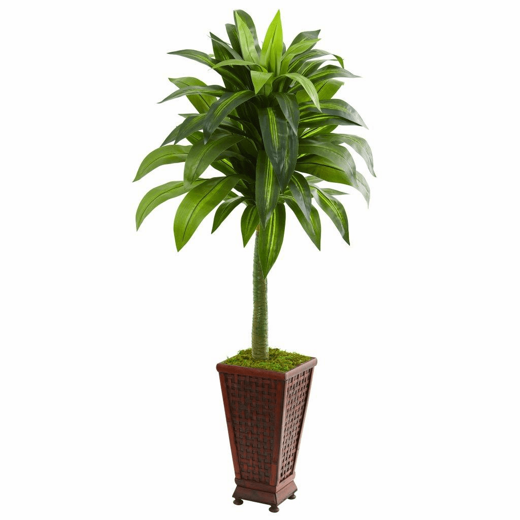 4.5� Dracaena Artificial Plant in Decorative Planter