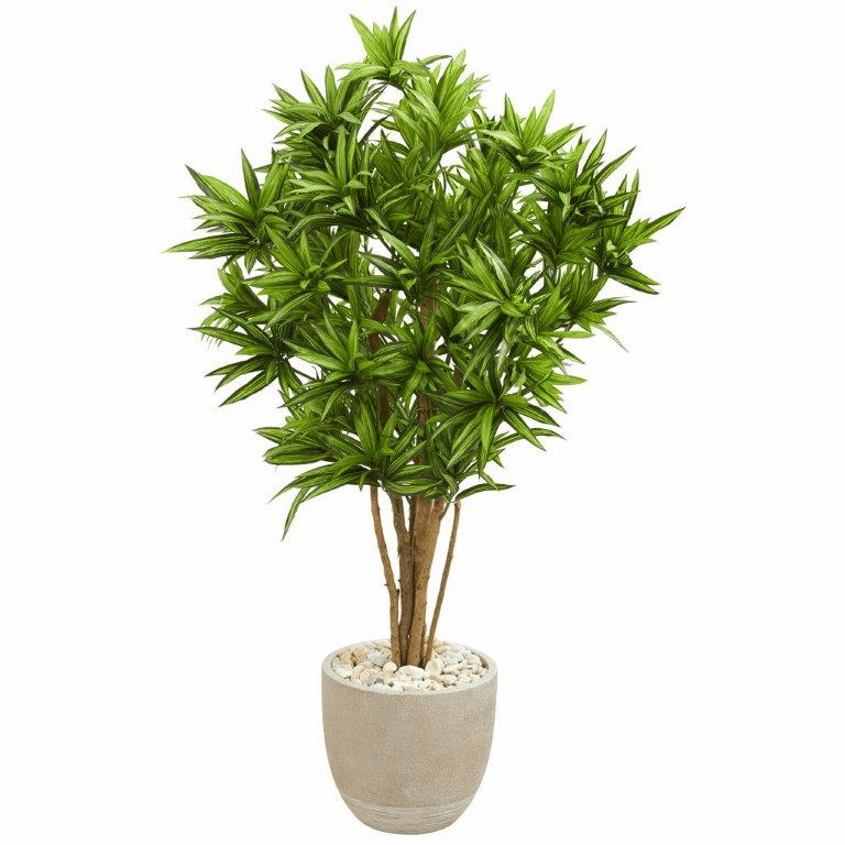4.5' Dracaena Artificial Tree in Sandstone Planter