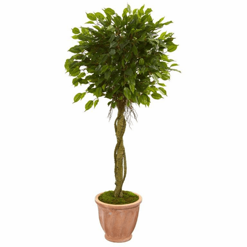 4.5' Ficus Artificial Tree in Terracotta Planter UV Resistant (Indoor/Outdoor)