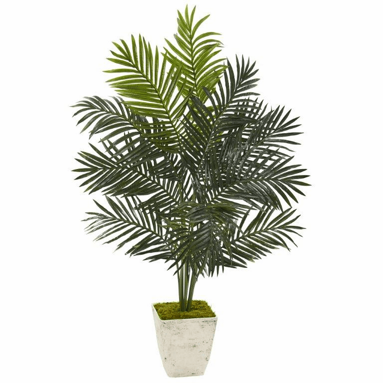 4.5� Paradise Palm Artificial Tree in Country White Planter -