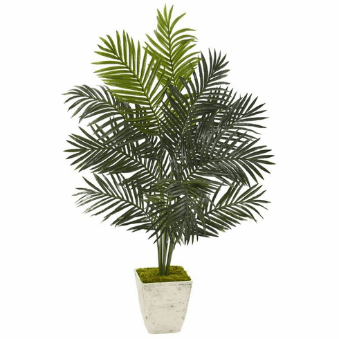 4.5' Paradise Palm Artificial Tree in Country White Planter -