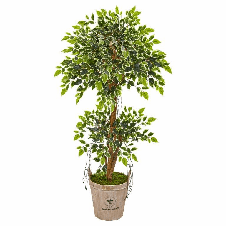 4.5� Variegated Ficus Artificial Tree in Farmhouse Planter