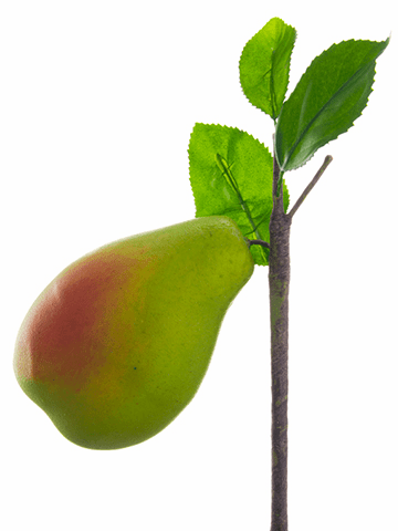 """4"""" Artificial Pear with Branch - Set of 12"""