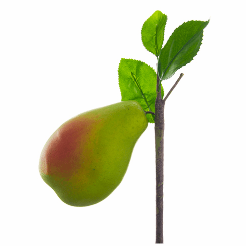 "4"" Artificial Pear with Branch - Set of 12"