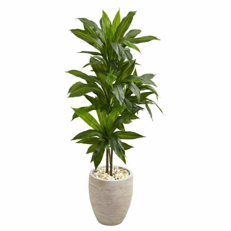 4� Dracaena Artificial Plant in Sand Colored Planter (Real Touch)