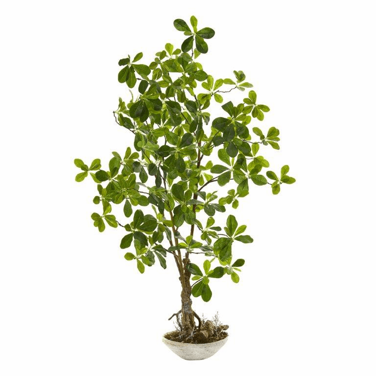 4� Schefflera Bonsai Artificial Plant in Planter
