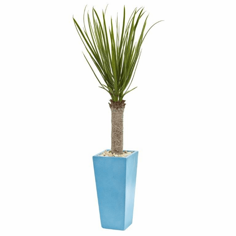 4� Yucca Artificial Tree in Turquoise Planter