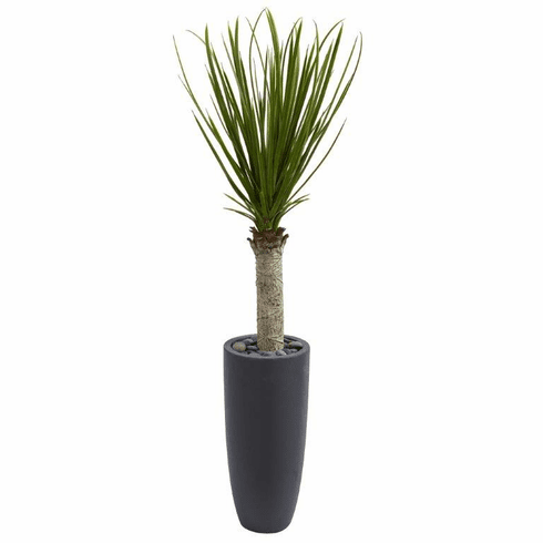 4' Yucca Tree Floor Plant in Gray Cylinder Planter