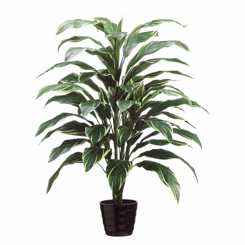 """40"""" Artificial Cordyline Plant in Black Round Plastic Pot - Set of 4 (shown in green/white)"""