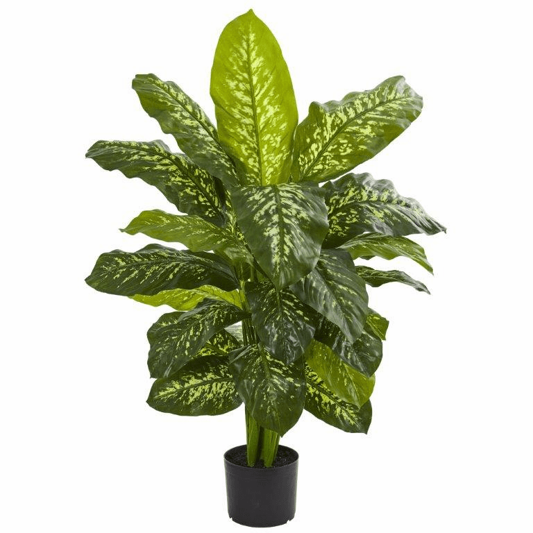 42� Dieffenbachia Artificial Plant (Real Touch)