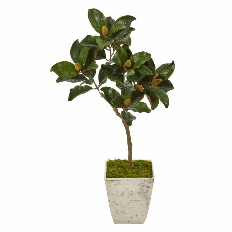 42� Magnolia Leaf Artificial Tree in Country White Planter -