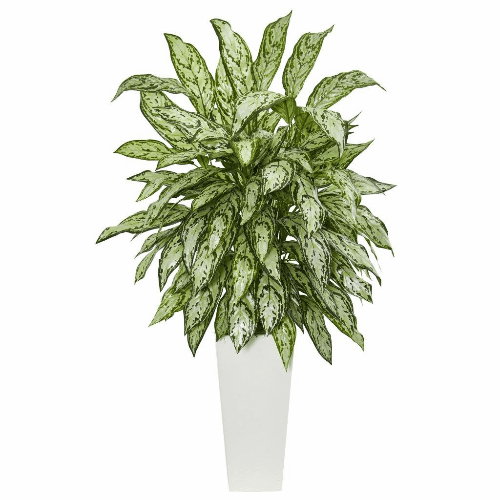 """43"""" Silver Queen Artificial Plant in White Tower Planter"""