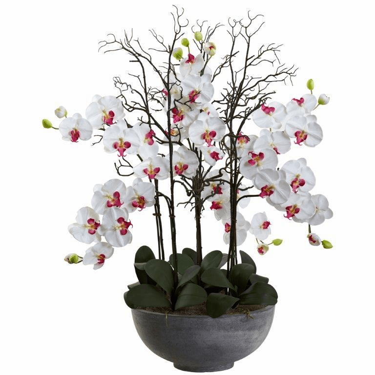 46� Giant Phalaenopsis Orchid Artificial Arrangement in Cement bowl - White