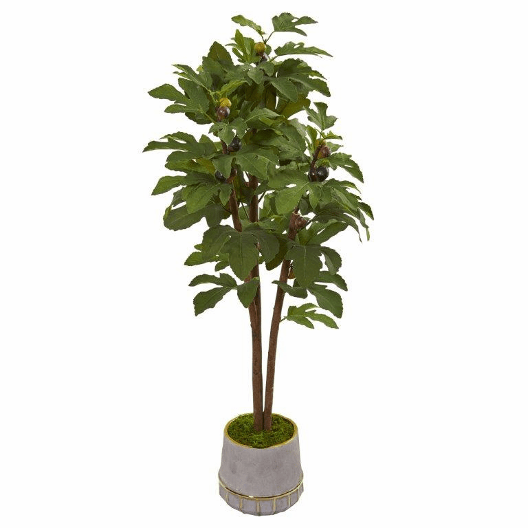 47� Fig Artificial Tree in Stoneware Vase with Gold Trimming -