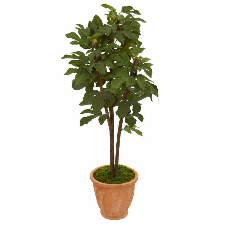 47� Fig Artificial Tree in Terra-Cotta Planter -