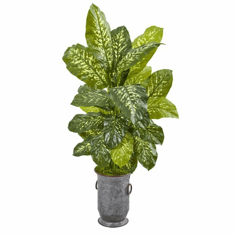 49� Dieffenbachia Artificial Plant in Vintage Metal Planter (Real Touch)