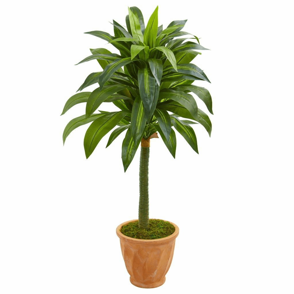 49� Dracaena Artificial Plant in Terra Cotta Planter
