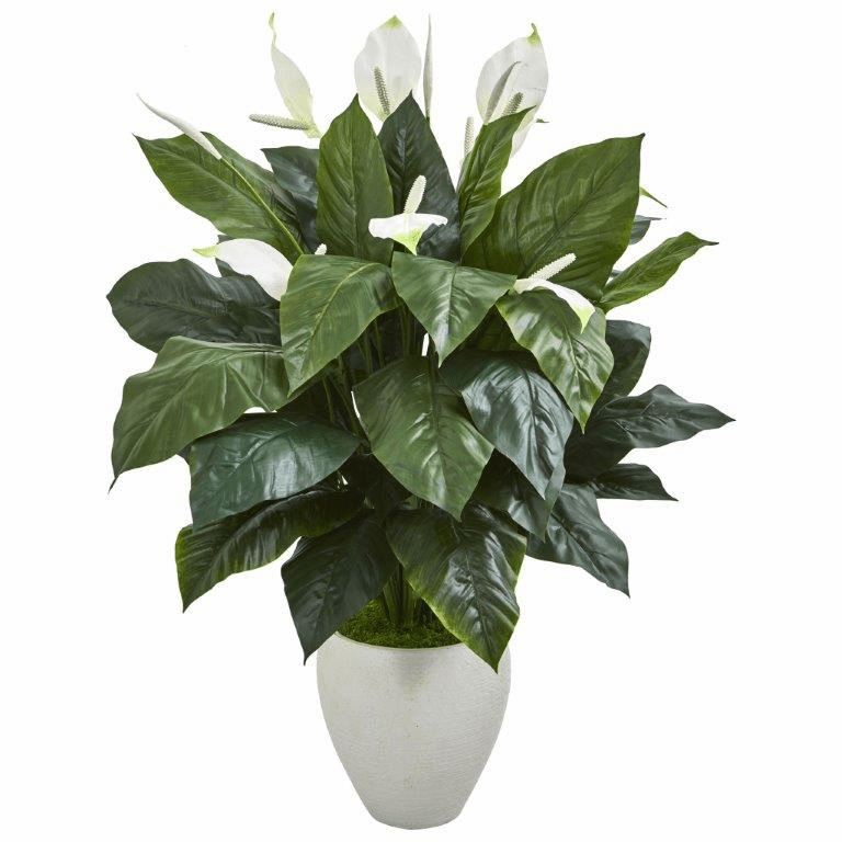 49� Elegant Spathifyllum Artificial Plant in White Planter