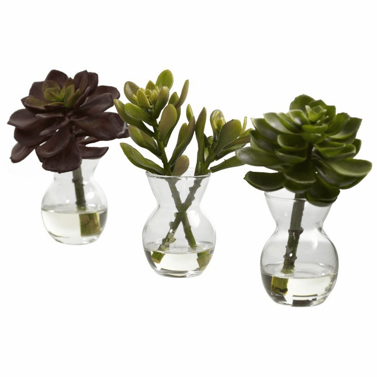 "5.5"" Artificial Succulent Arrangements (Set of 3)"