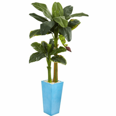 5.5' Banana Artificial Tree in Turquoise Tower Vase -