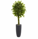 5.5� Braided Ficus Artificial Tree in Gray Cylinder Planter UV Resistant (Indoor/Outdoor)