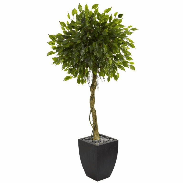 5.5� Ficus Artificial Tree in Black Wash Planter UV Resistant (Indoor/Outdoor)