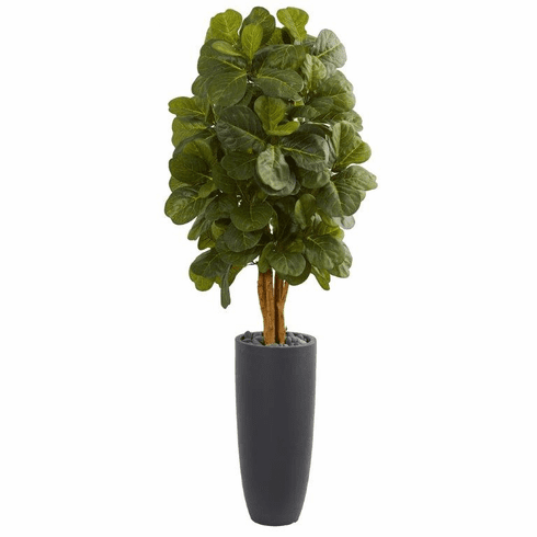 5.5' Fiddle Leaf Artificial Tree in Gray Cylinder Planter