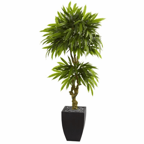 5.5' Mango Artificial Tree in Black Wash Planter UV Resistant (Indoor/Outdoor) -