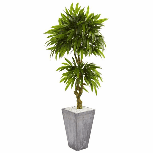 5.5' Mango Artificial Tree in Concrete Planter UV Resistant (Indoor/Outdoor)