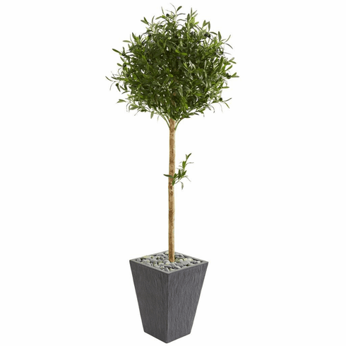 5.5' Olive Topiary Artificial Tree in Slate Planter