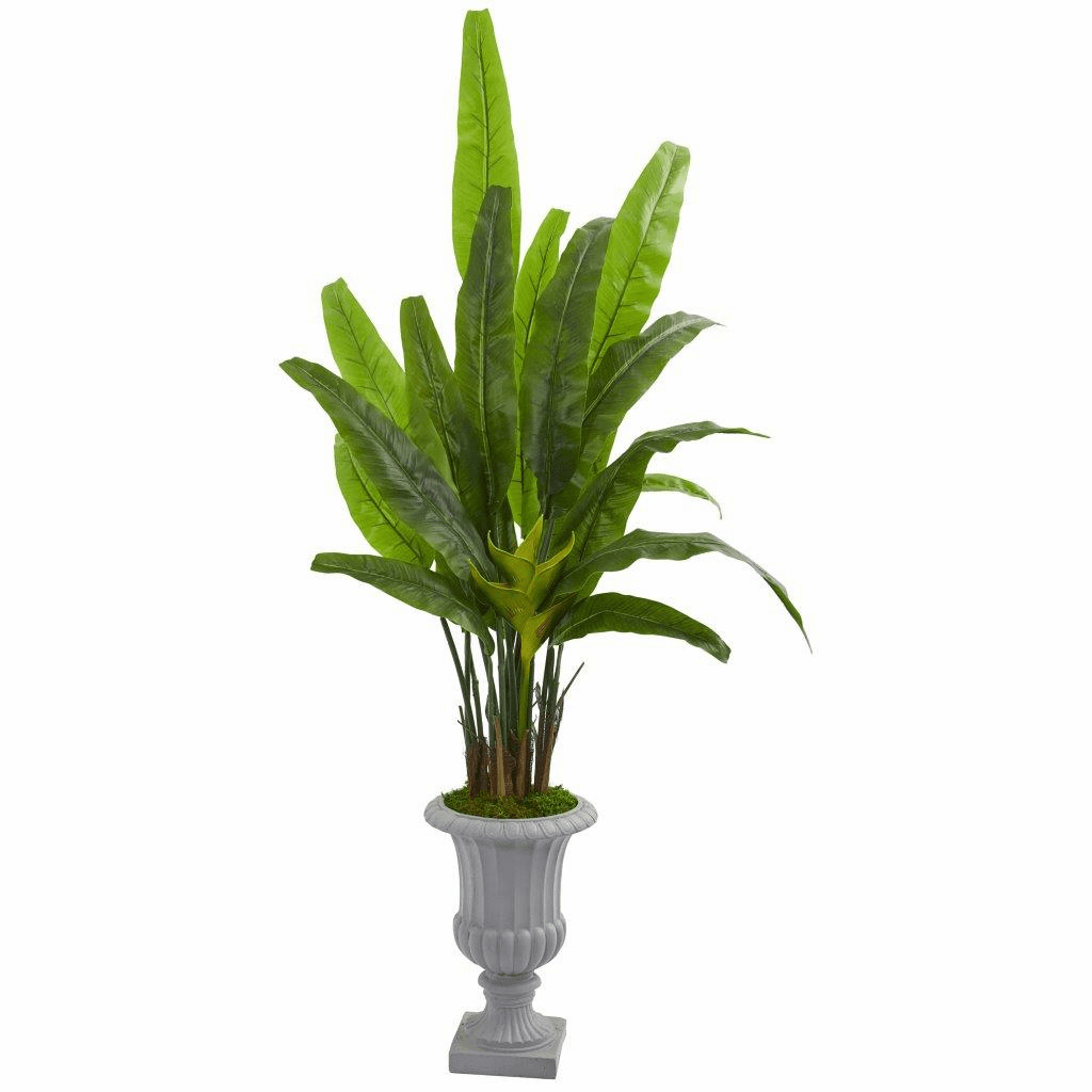 5.5� Travelers Palm Artificial Tree in Gray Urn