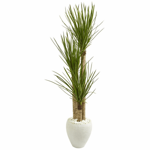 5.5' Yucca Artificial Tree in White Planter