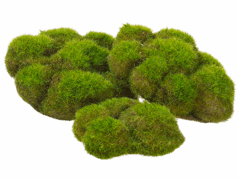 "5.9""Width x 5.5""Length Artificial Assorted Mood Moss x3 in poly bags (6 Bags)"