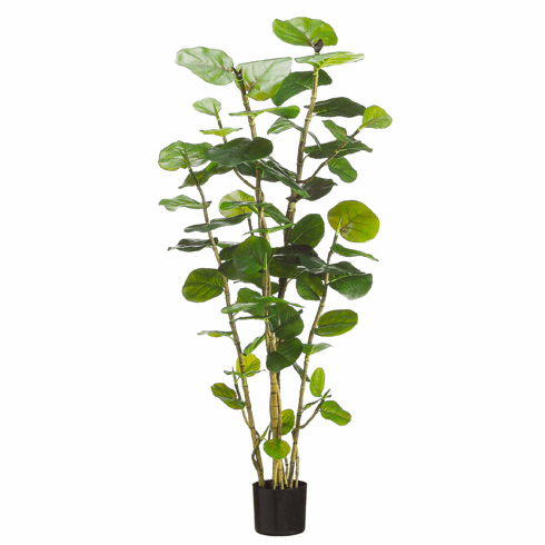 5' Artificial Eva Sea Grape Floor Plant with 67 Leaves in Black Pot - Set of 2