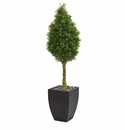 5� Boxwood Cone Artificial Tree in Black Wash Planter UV Resistant (Indoor/Outdoor)