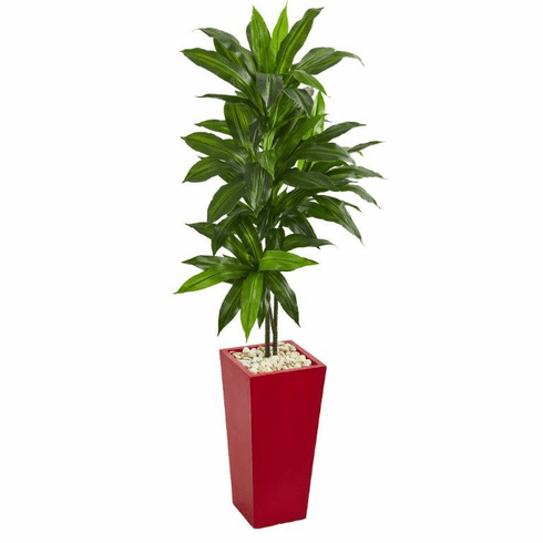 5' Dracaena Artificial Plant in Red Planter (Real Touch)