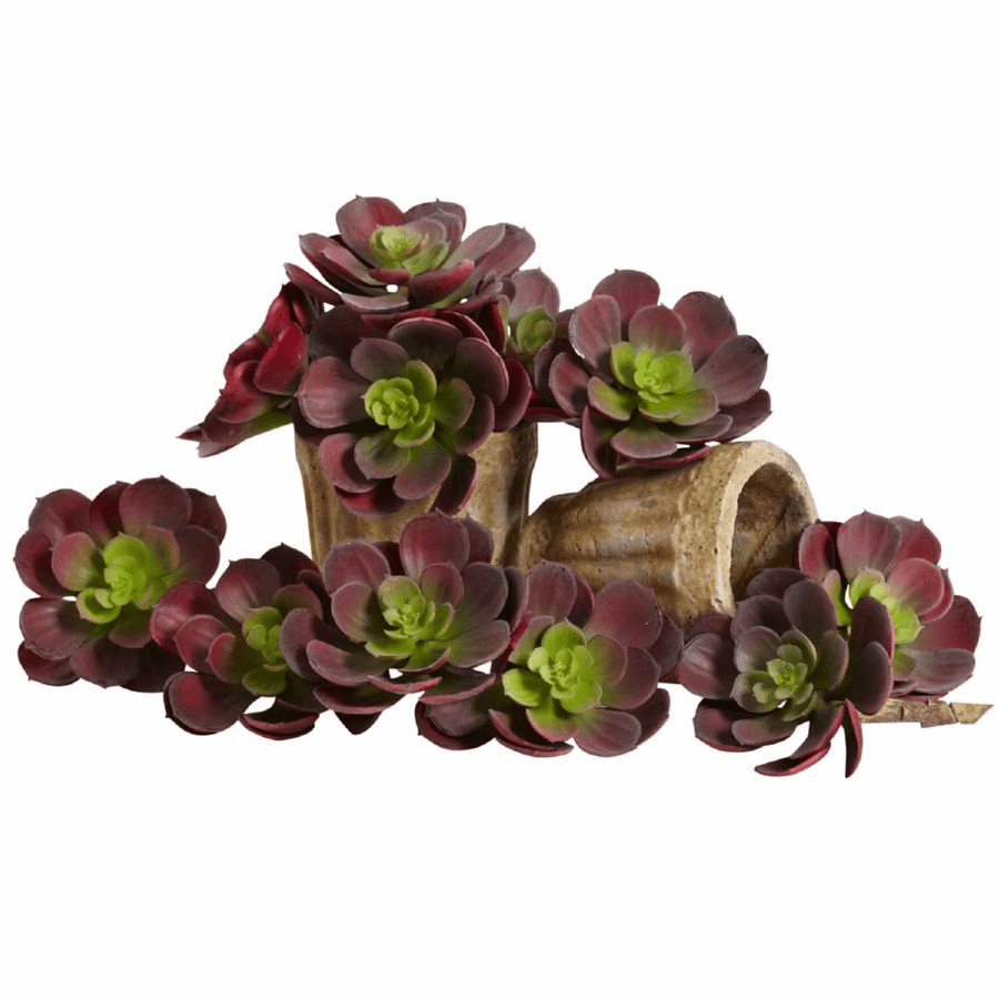 5� Echeveria Succulent Plant Artificial Cactus (Set of 12) in Burgundy